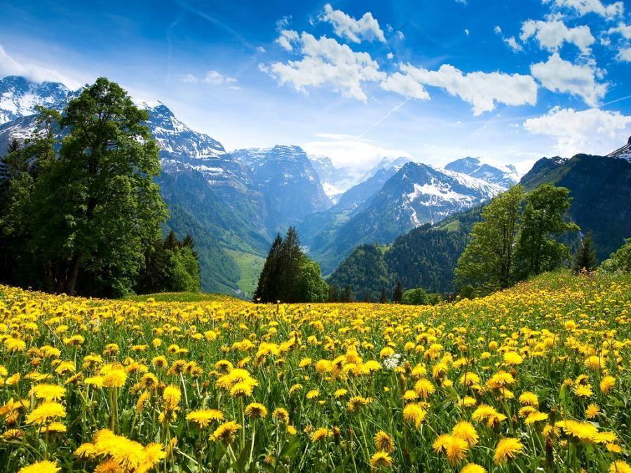 Spring In Switzerland Mountain Landscape Scenery Wallpaper Scenery
