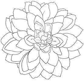 Darling Dahlia Rubber Cling Stamp Dahlia Drawings Oil Pastel Art