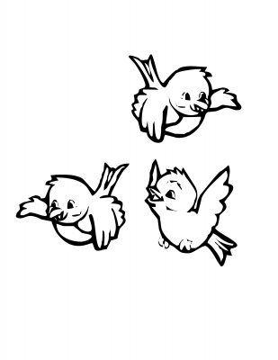 Imagens De Aves E Pássaros Para Imprimir E Colorir