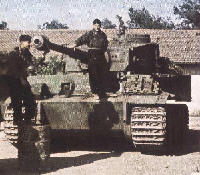 tiger with its crew - Tiger Pictures To Color 2