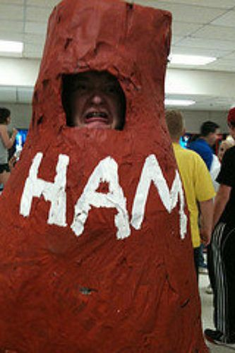 No better place to ham it up than in a ham costume. | Hams ...