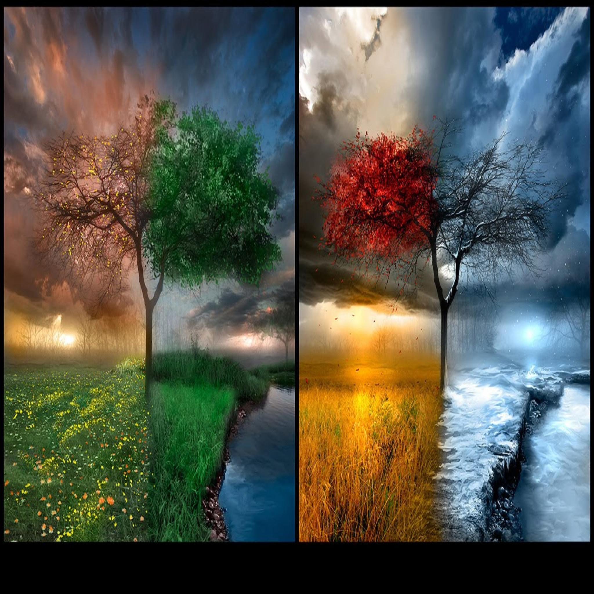 Seasons Photo Hd Wallpapers Art Wallpaper Beautiful Nature Art