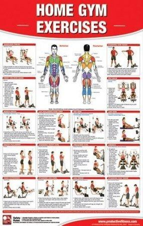 #fitness  #exercises  #home #Home #gym #exercises  Home gym exercises chart fitness 64 Super ideas