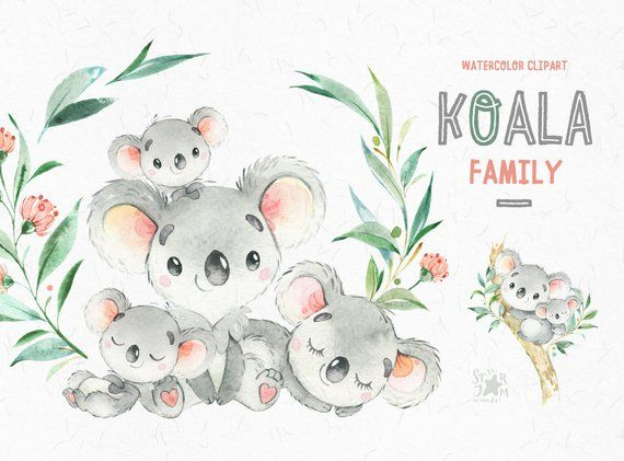 Koala Family Little Animals Watercolor Clipart Australia