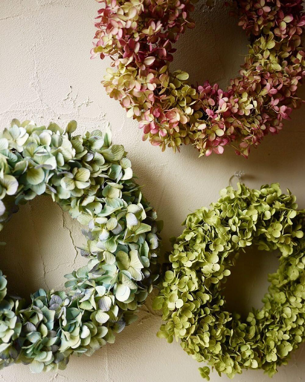 紫陽花だけの簡単リース 今日は爽やかなお天気で気持ちいいですが ドライフラワーのアジサイでリースを作るときは 湿気っぽい日のほうが作りやすいです ちょっと湿気を含んだ花がばらばらになりにくいです 紫陽花 秋色アジサイ リース ミナズキ アナベル