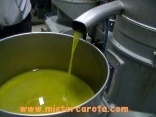 Raccolta e lavorazione delle olive e produzione di olio
