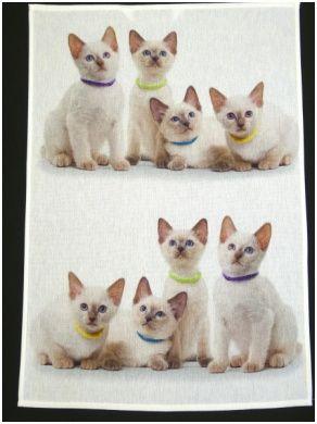 Simplistic Kissenbezug 30x30 Animals Haus Dekoration