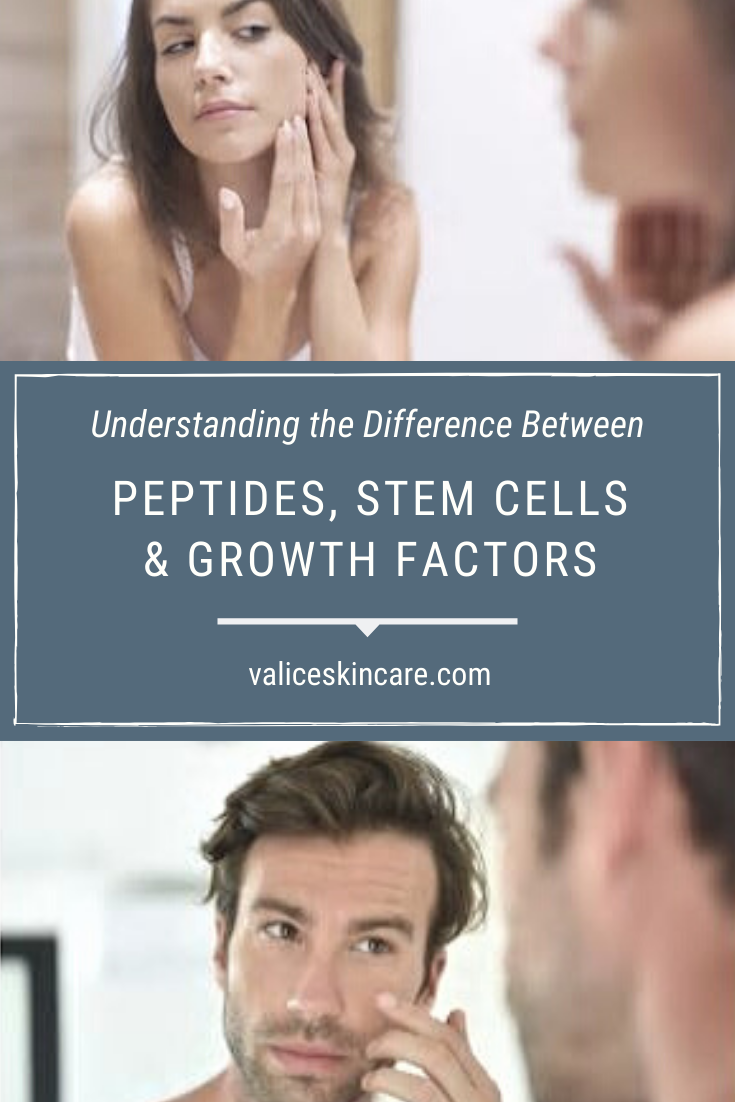 Understanding Peptides Stem Cells And Growth Factors In Skin Care 2019 Growth Factor Stem Cells Advanced Skin Care