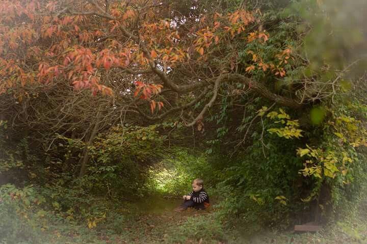 Secret Hiding Places by CrowHop Photography
