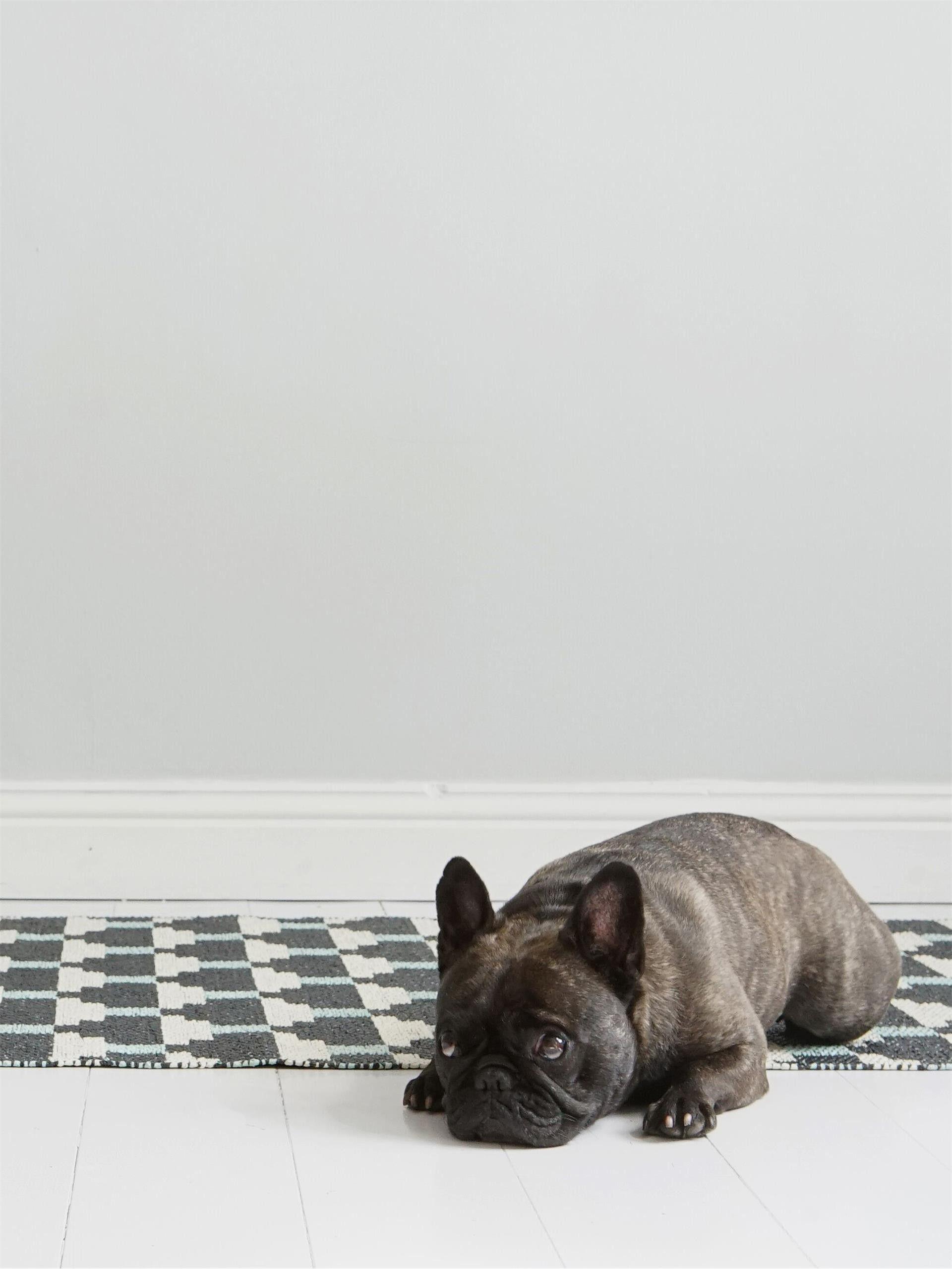 house doctor teppich kunststoff top karin hellblauer. Black Bedroom Furniture Sets. Home Design Ideas