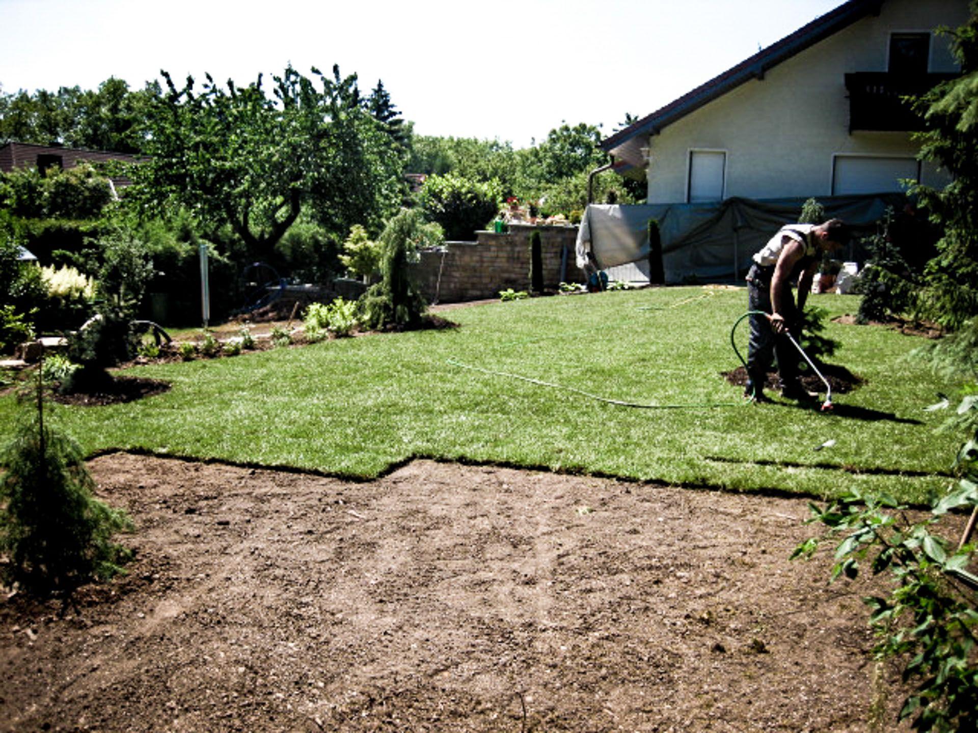 Forner Garten Landschaftsbau Theissen Zeitz 011 Gartenbau Garten Zeitz Plants