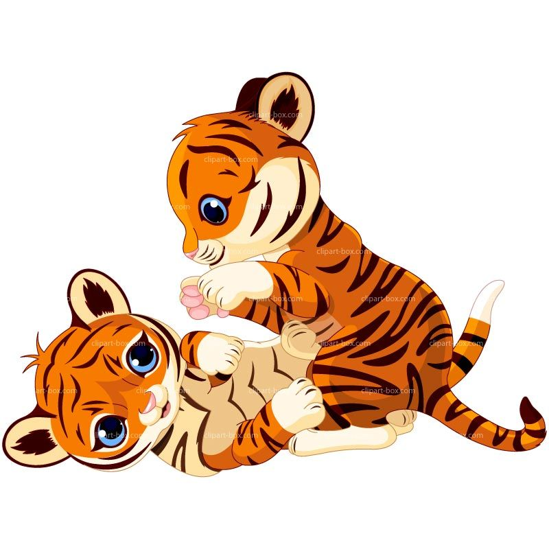 baby tigers google search a happy thought a day keeps the lies rh pinterest com cute baby tiger clipart cute baby tiger clipart