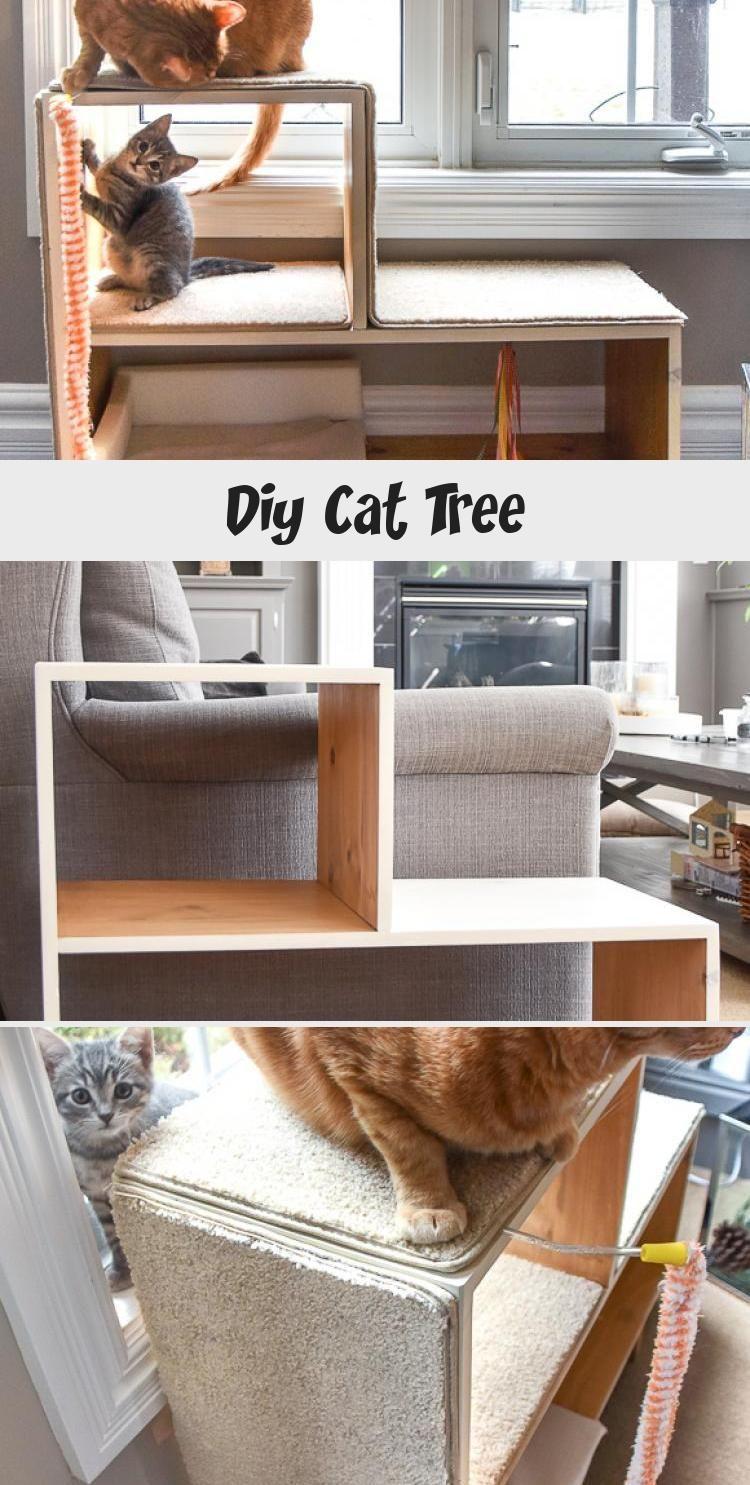 My Blog En Blog In 2020 Diy Cat Scratching Post Cat Playground Cat Diy