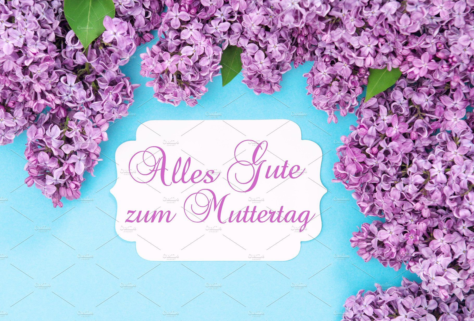 Lilac Flowers Greetings Card German In 2020 Lilac Flowers Greeting Cards Lilac