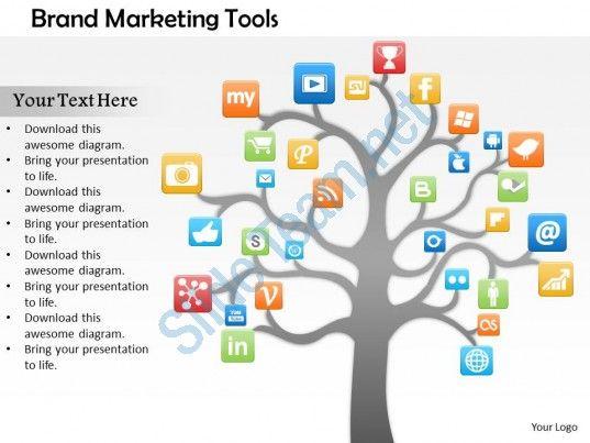 Social media capture percentage diagram powerpoint template.
