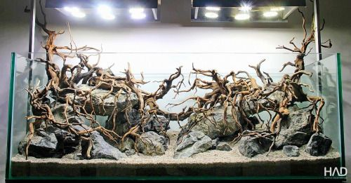 Hardscape by Hamsa Aquarium Design HAD Sometimes one is ...