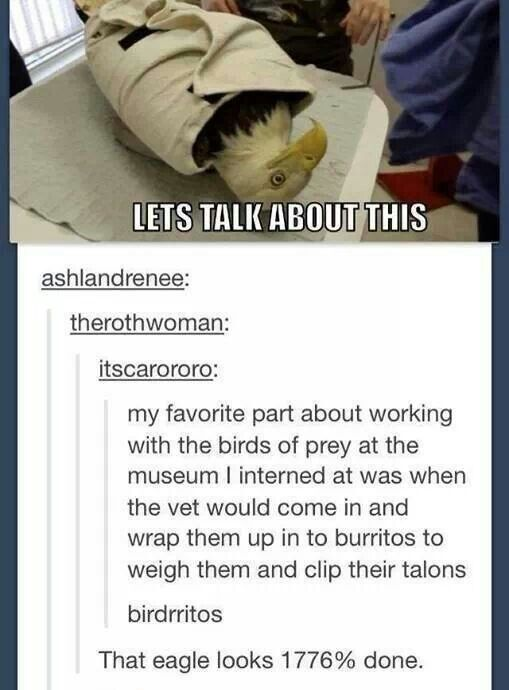 Birdrritos