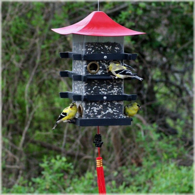 Fenêtre Mangeoire à oiseaux Boîte Patio regarder les oiseaux sauvages pour oiseaux sauvages ALIMENTATION SEMENCES Feeder