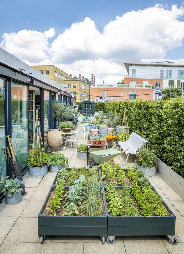 Rooftop garden by the conran shop gardens pinterest huerto huerto urbano y terraza jardin - Invernadero casero terraza ...