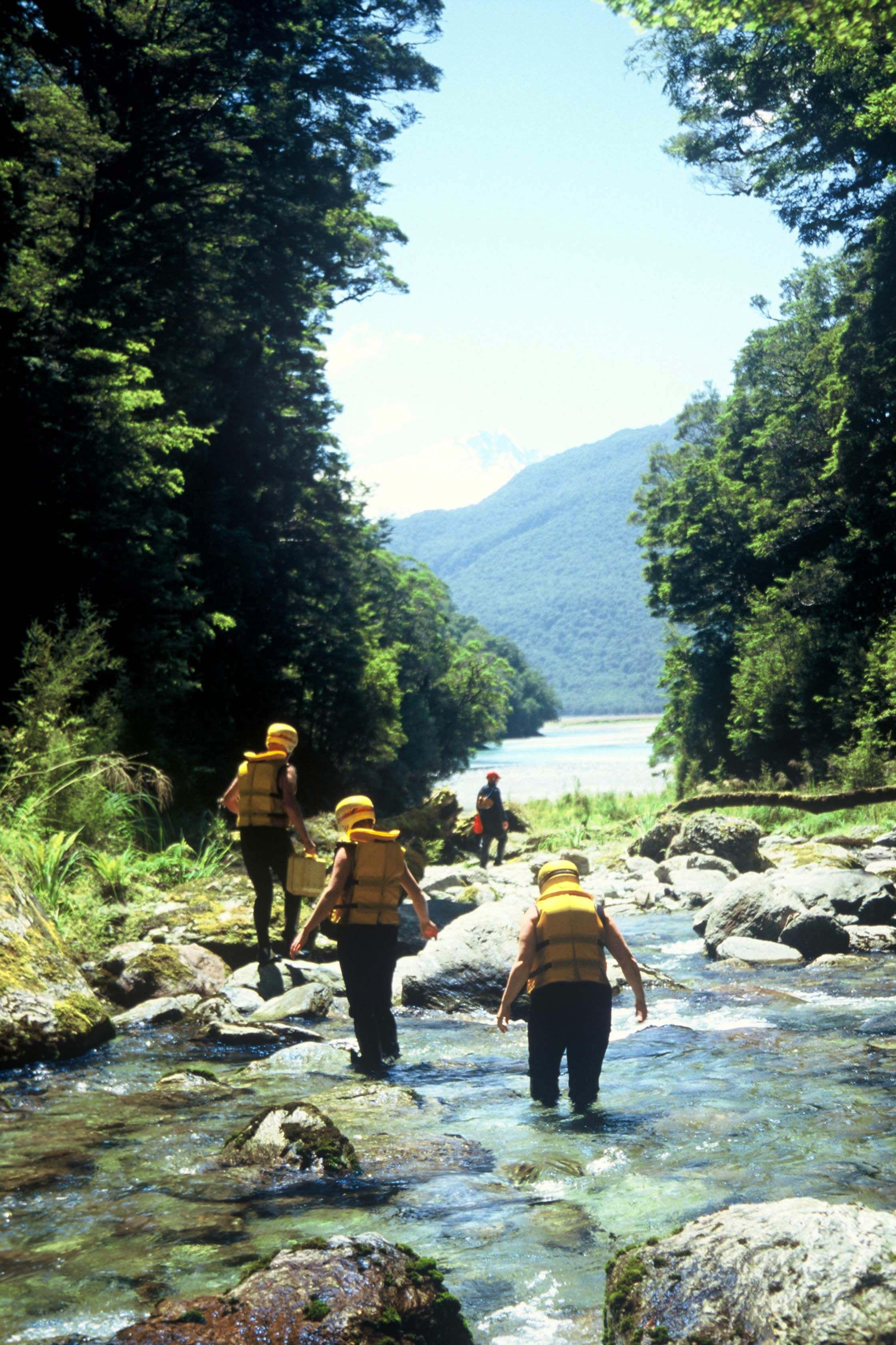 Purple Creek, Landsborough River, Queenstown Rafting, New