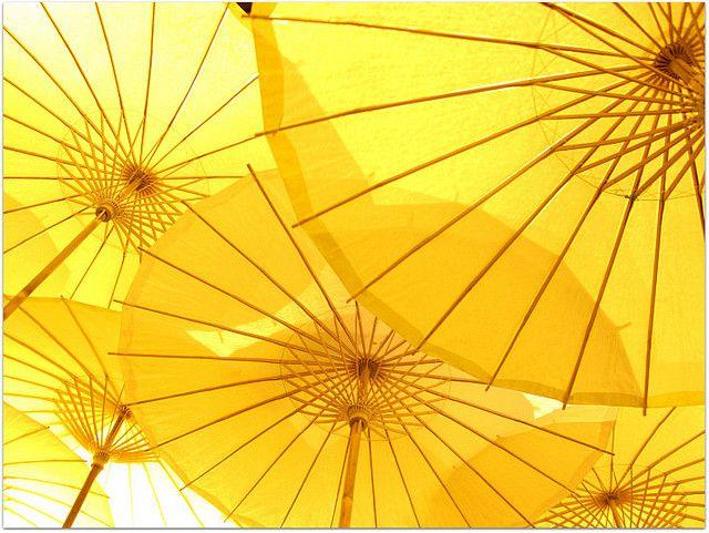yellow umbrellas!