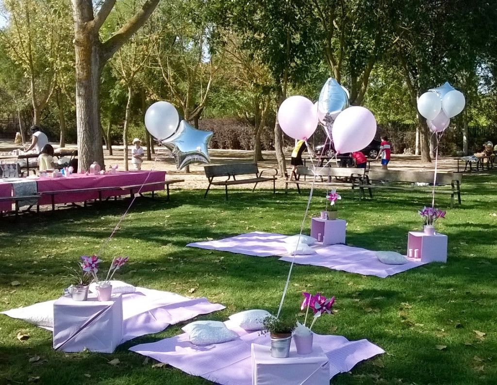 Cumpleaños en el Parque Z birthday idea 30th birthday parties, Birthday, Picnic menu