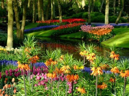 Jardines de keukenhof holanda fotograf a de - Jardines de holanda ...