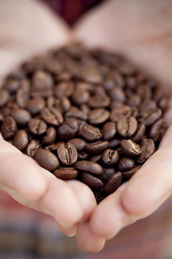 Coffee Beans #typesofcoffeebeans   Best organic coffee ...