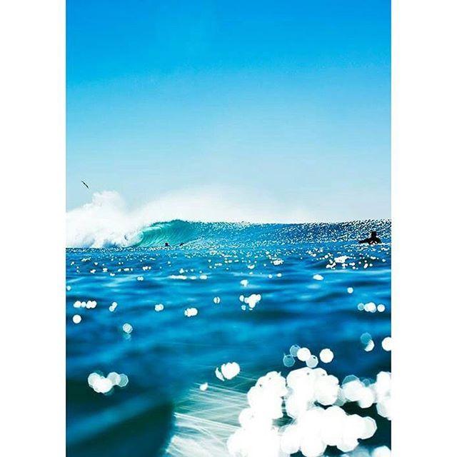 S P A R K L E #stretcheyz #sea #surf #surfing #beach #sand #waves #surfwear #surfer #surfsuit #swim #ocean #bondi #kiteboarding #yoga #activewear #surfleggings #leggings #kiteboarding #rashguard #wakeboarding #kitegirl #spring www.stretcheyz.com