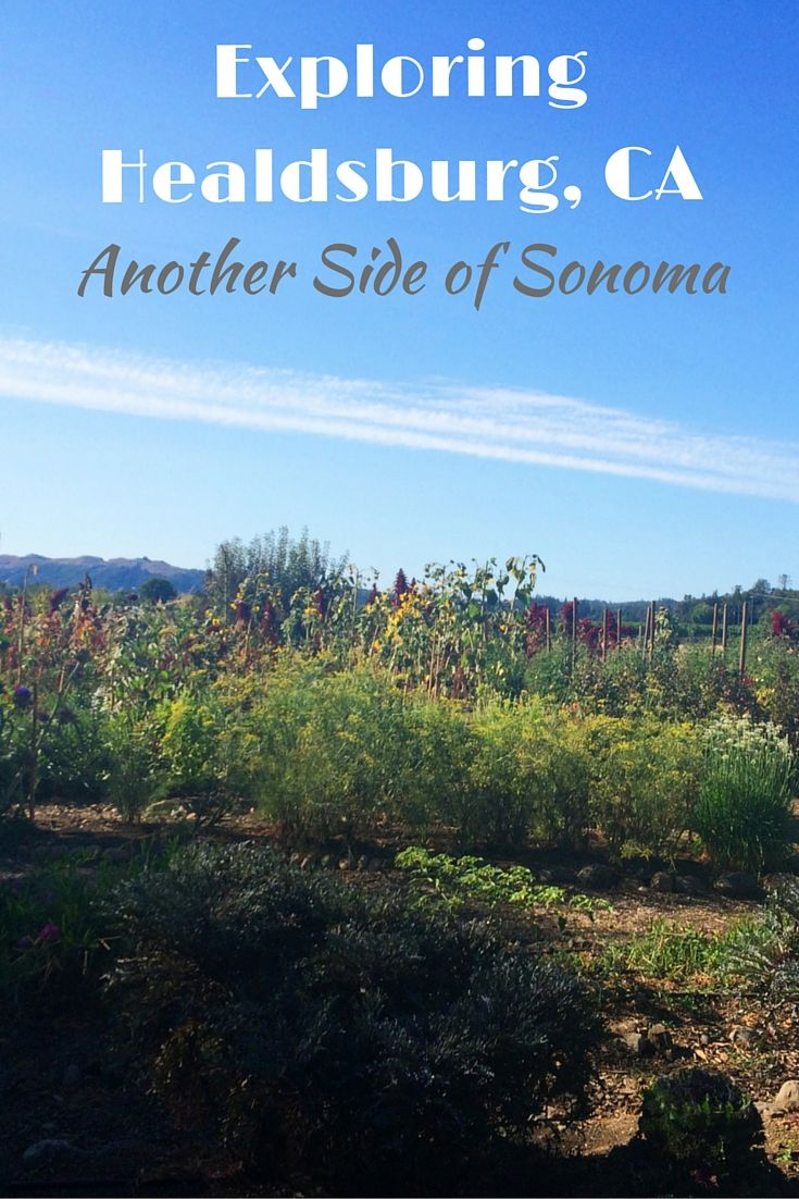 Exploring Healdsburg, California; Another Side of Sonoma ...