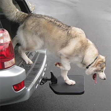 Twistep Dog Platform For Tow Hitch Swivels Under The Car When Not