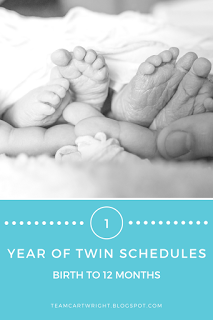 12 months of basic sample schedules for twins and babies ...