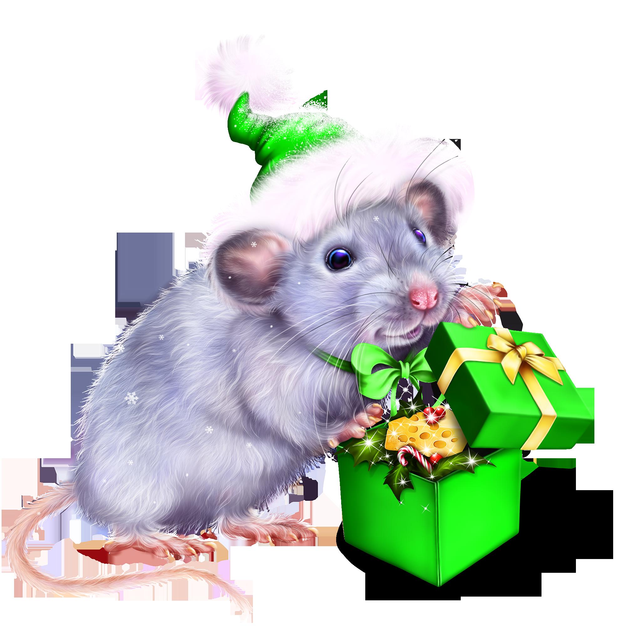 Открытки свои, картинки с кодом для форума мышь