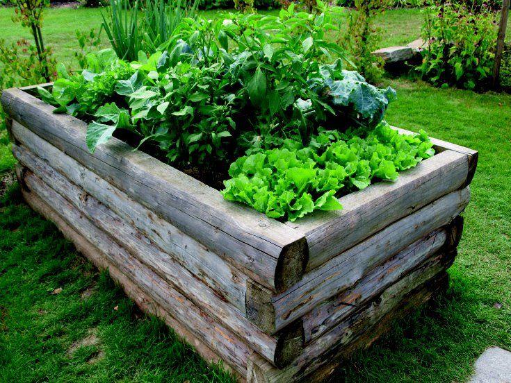 Potager sur lev avec rondin de bois potager en carr design carr potager jardins et potager for Bac carre potager bois