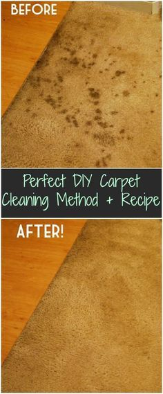 Homemade Dry Carpet Cleaner House Pinterest Carpet Cleaners