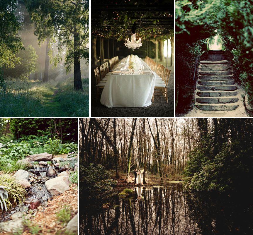 Forest Venue | Forest wedding, Enchanted forest wedding ...