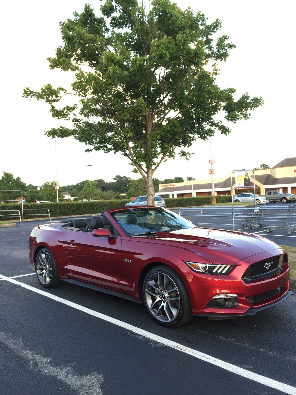 2015 ruby red mustang gt convertible my mustang gt. Black Bedroom Furniture Sets. Home Design Ideas