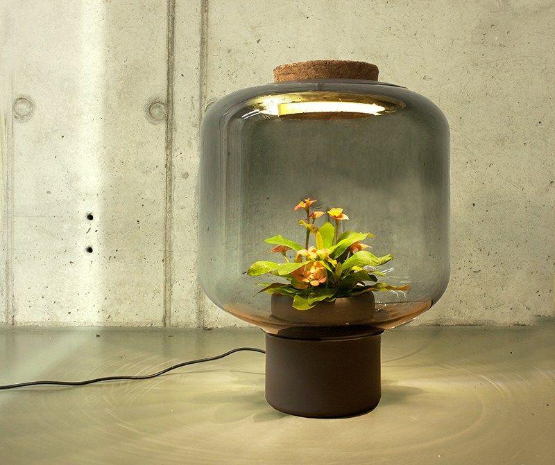 Grow Plants In Windowless Spaces Glasleuchten Kreative Lampen Und Pflanzenlampe