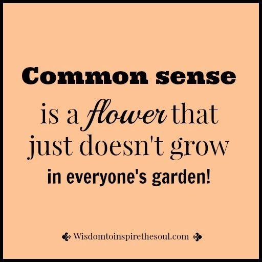 Wisdomtoinspirethesoul.com: Common Sense Doesn't Grow