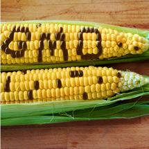 Is GMO Food Natural? See what the government says