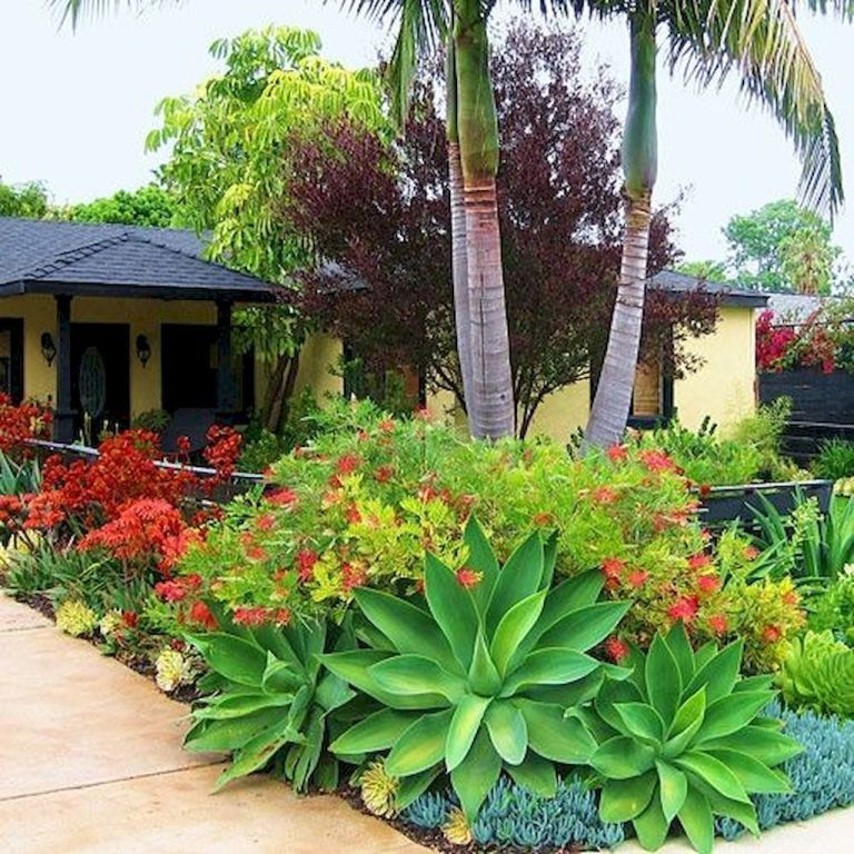 Best Front Yard Landscaping Ideas and Garden Designs (22) - oneonroom - Florida ...#designs #florida #front #garden #ideas #landscaping #oneonroom #yard