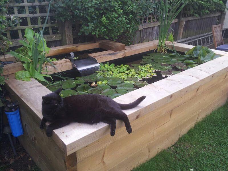 pin by lin adlington on garden