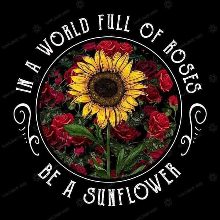 Pin by Cyndy Simons on sweet sunflowers | Sunflower quotes ...