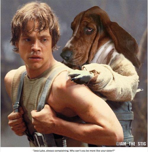 basset hounds movie pictures   ... Vlog » Basset Hound Stig photoshop photo bombs iconic movie posters