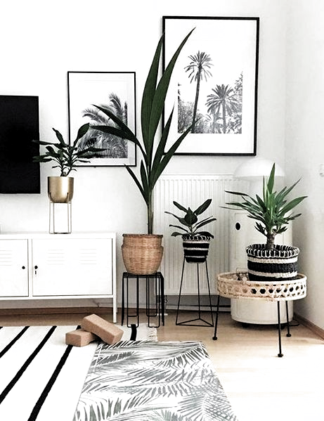 28.02.2020 - Palmen Wanddeko Inspiration #Wohnen #Inspiration #Botanical #GreenLiving #Urbanjungle #Palmen