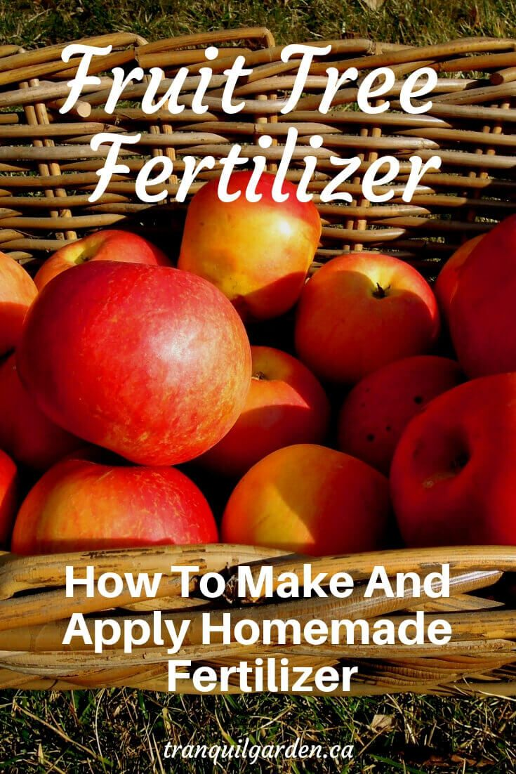 Fruit Tree Fertilizer How To Make And Apply Homemade Fertilizer Fruit Trees Fruit Fertilizer