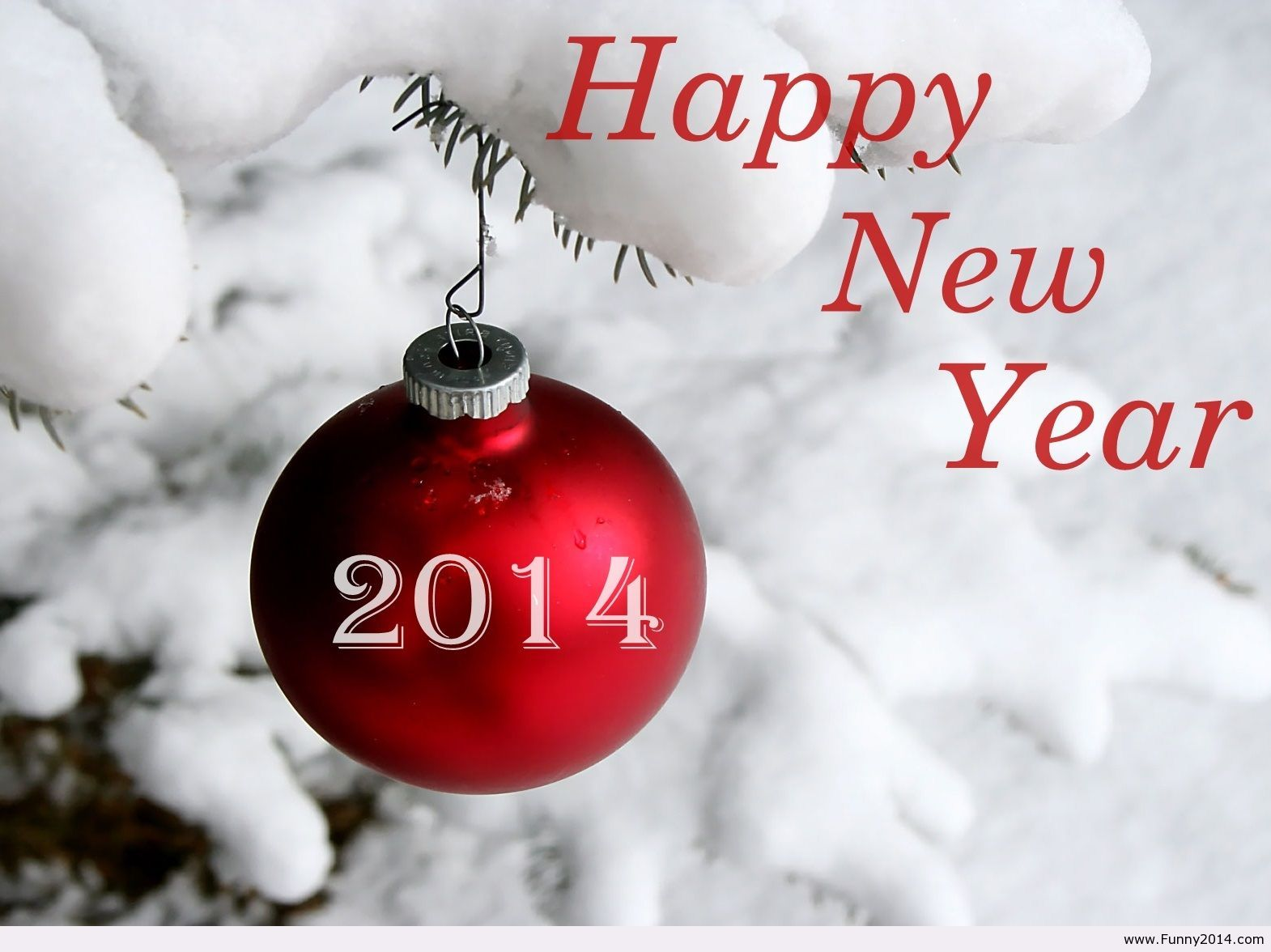 Happy New Year! | PMO Care | Pinterest | Snow