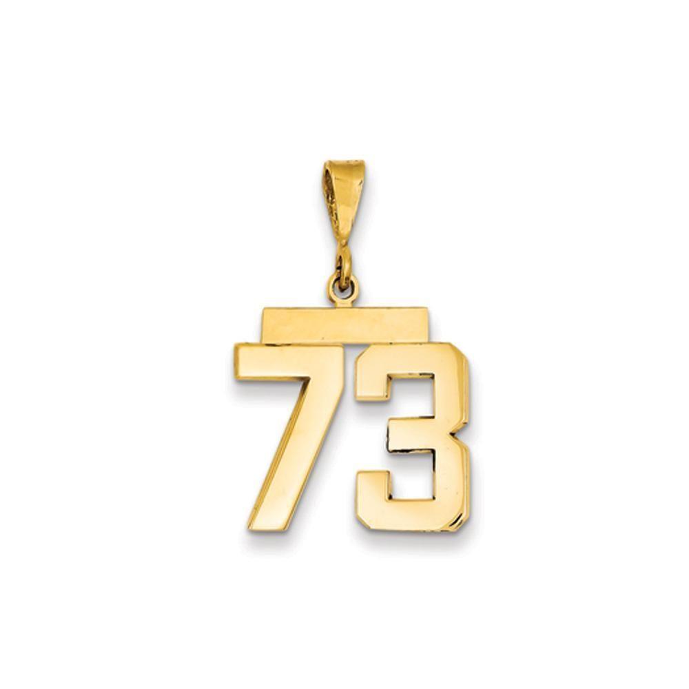 14K Yellow Gold Medium Shiny-Cut Number 80 Charm