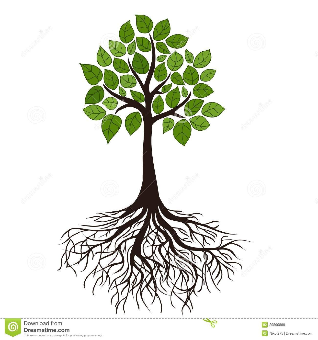 Tree with Roots and Branches | Tree with roots and dense foliage ...