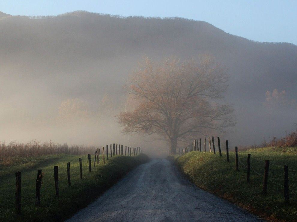 Cades Cove Picture -- National Park Photo -- National Geographic Photo of the Day